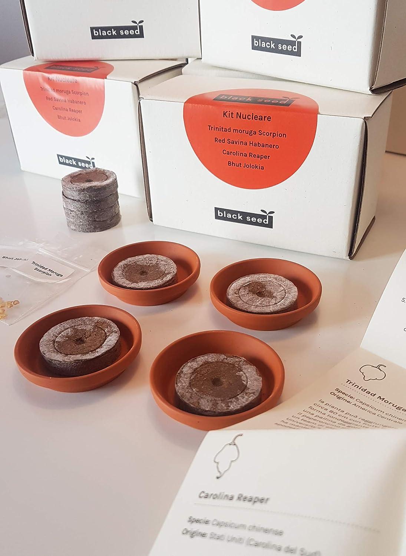 Kit Nucleare – Black Seed – Kit de semillas – Kit de iniciación ...