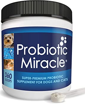 Nusentia Probiotic Miracle Supplement