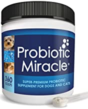 Nusentia's Probiotic Miracle