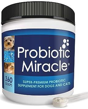 Nusentia Probiotic Miracle Los probióticos Perro Probiotic ...