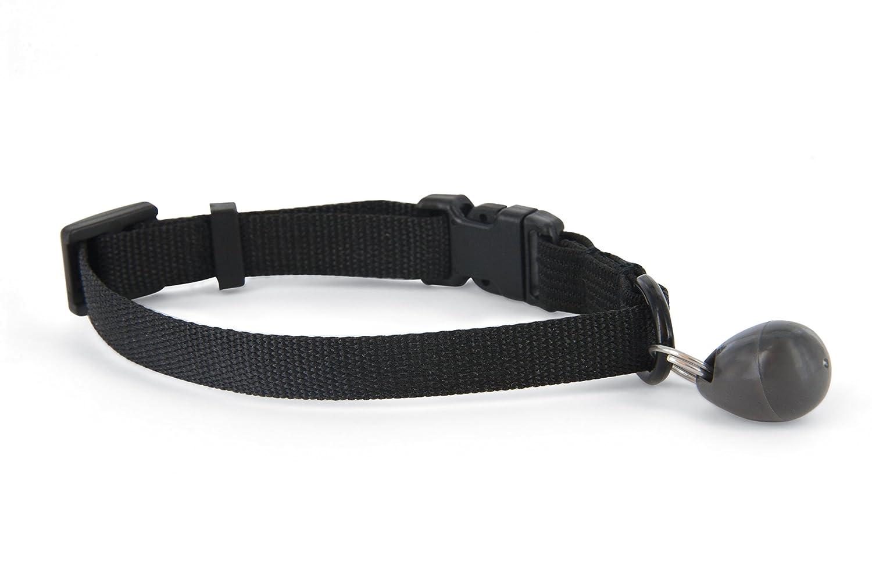 petsafe staywell halsband mit magnetschl ssel halsbandmagnet f r ebay. Black Bedroom Furniture Sets. Home Design Ideas