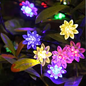 Lufei Battery Operated Indoor String Lights 40 LED Lotus Flower Multi color for Party Wedding Christmas Bedroom Decoration