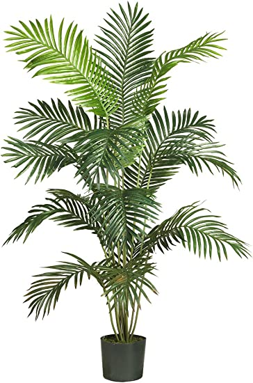 Amazon Com Nearly Natural 5260 Paradise Artificial Palm Tree 5 5 Feet Green 72 X 9 X 9 Home Kitchen
