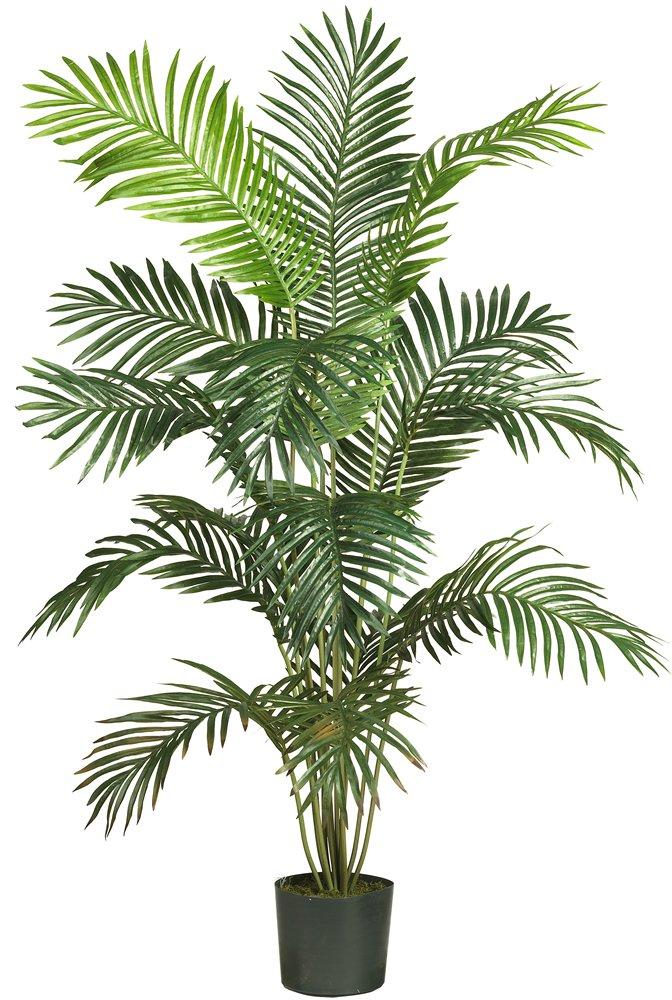 ほぼ自然5260 Paradise人工Palm Tree、5.5-feet、グリーン B00A2GKT12