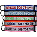 Embroidered Reflective Safety Personalized Dog Collar – Adjustable with Plastic Snap Closure