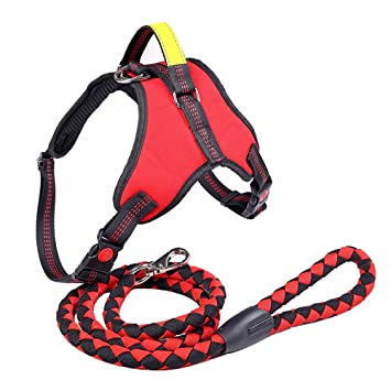 G-ze Dog Harness Durable dog Leash Set Adjustable Harness With Handle