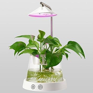 Amazon.com : LED Indoor Garden Kit Plant Grow Light, Height ...