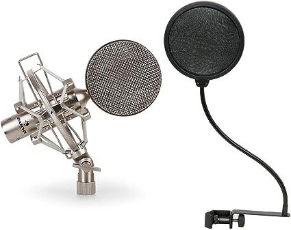 Auna CRM15 Micrófono cinta polar bidireccional vintage (salida XLR, sensibilidad -54db, filtro antipop) plateado: Amazon.es: Instrumentos musicales