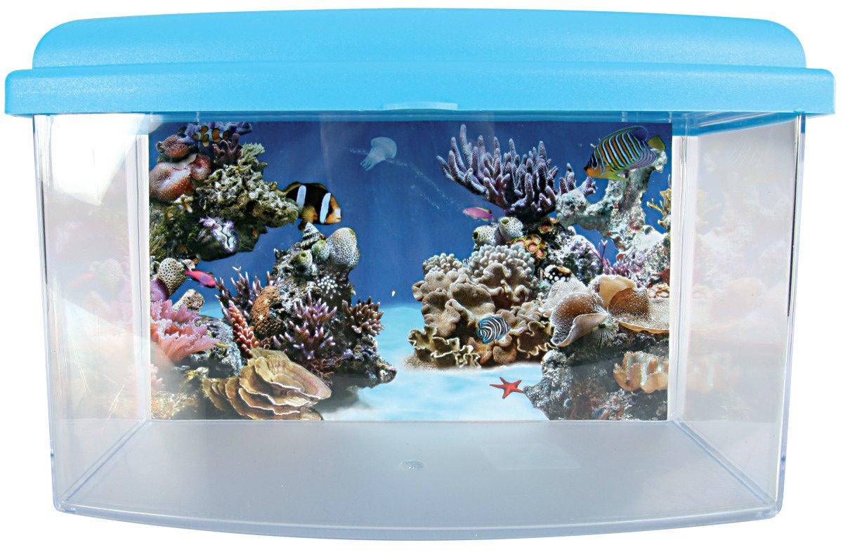 ZOLUX Travelbox II Acuario para Transporte/habitación Infantil para acuariofilia 22 cm: Amazon.es: Productos para mascotas