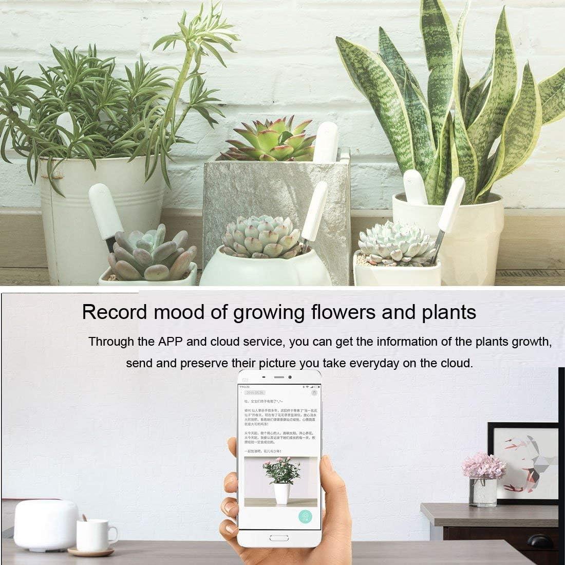 Flower Care for Xiaomi Flora Pflanzen Clever 4 in 1 Smart Plant Luftfeuchtigkeit Helligkeit D/ünger Temperatur,mit Bluetooth und App-Kontrolle