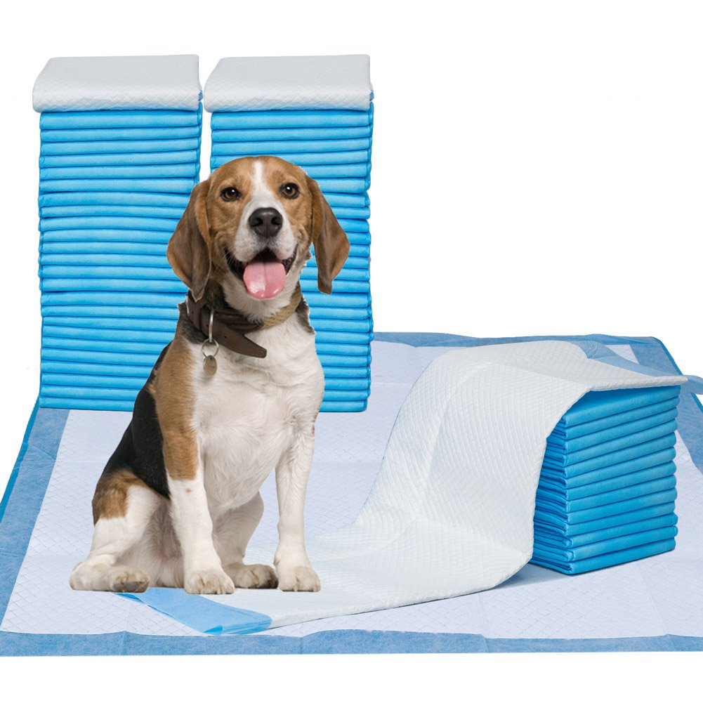 Puppy Pads, 34'' x 28'' XXL-Large, Ultra Absorbent - All Day Premium Dog Pads - 42 Count by Petphabet by Petphabet