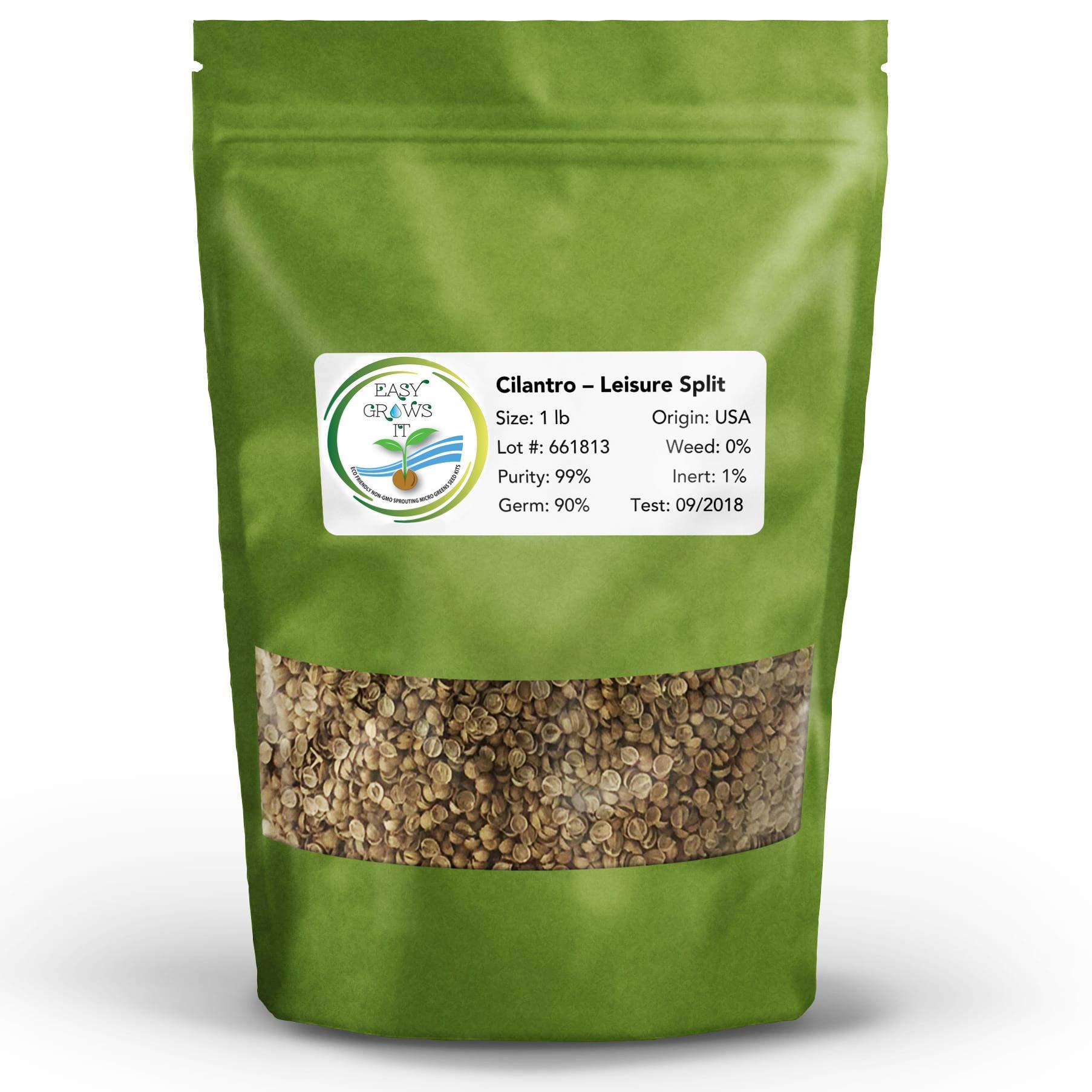 Cilantro Microgreen Seed 1 lb Bulk | Easy Grows It Non GMO Leisure Split Coriander Seeds for Micro Greens, Sprouts, and Gardens