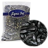 25 kg Sonnenblumenkerne schwarz Original Lyra Pet 1A Qualität