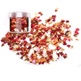 Laza Chunky Glitter Autumn Leaves Nail Art Sequin Flake Leaf Shaped Red Orange Mixed DIY Design Confetti for Decoration…