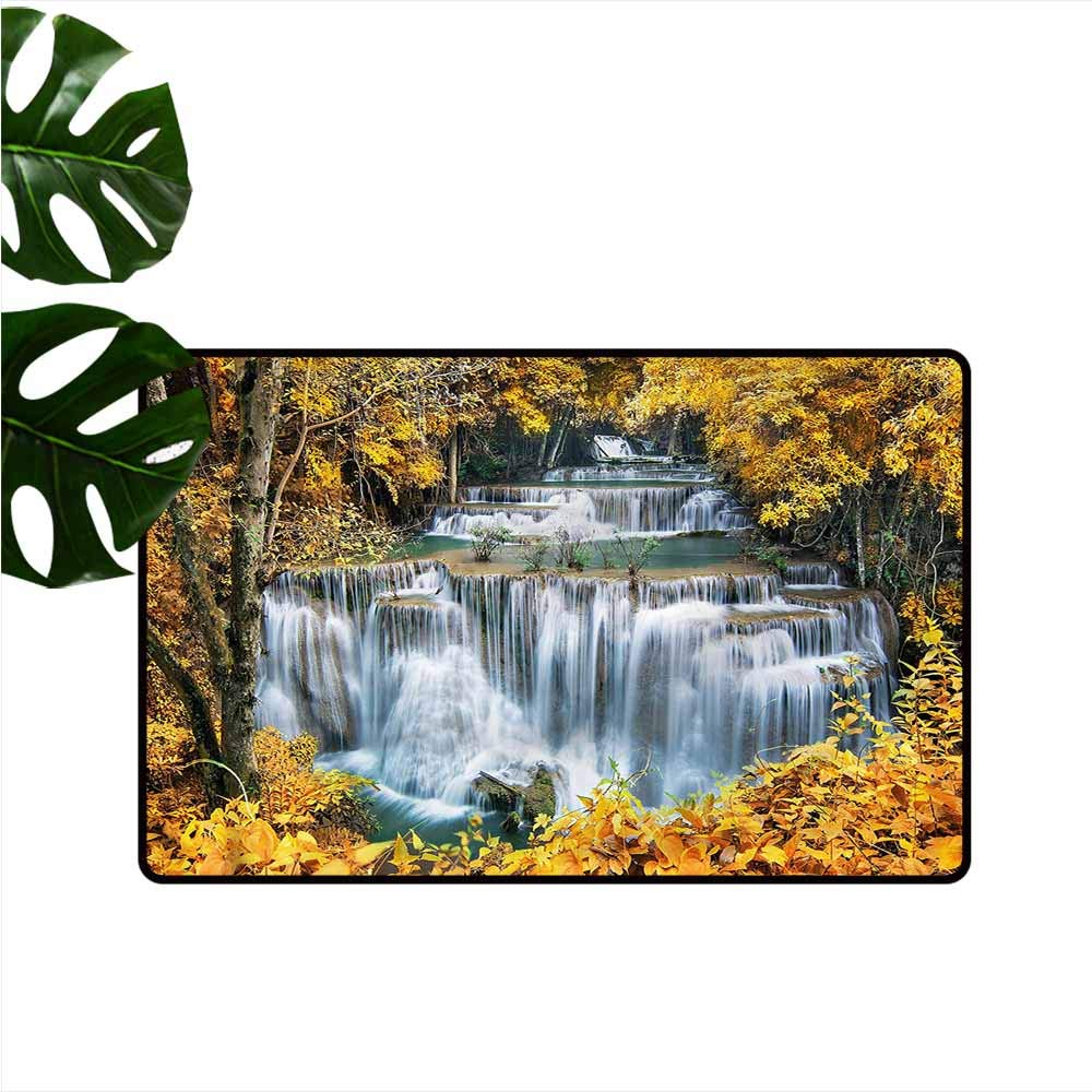 """HOMEDD Welcome Doormat,Waterfall Trees with Leaves Nature,Customize Door mats for Home Mat,24""""x16"""""""