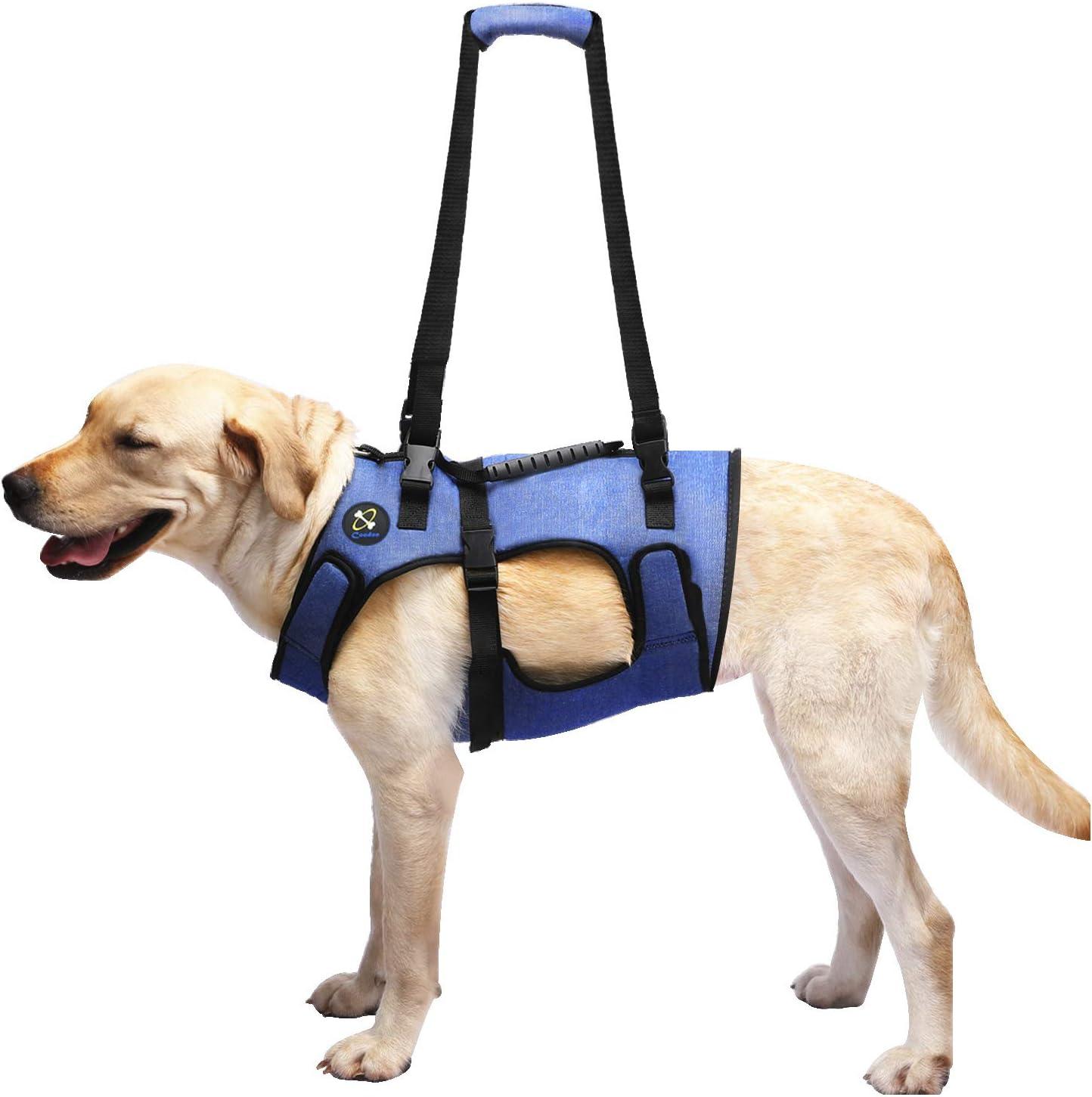 Arnes elevación para perros c cabestrillo de recuperación L
