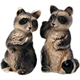 Salt & Pepper Shaker Set Raccoon