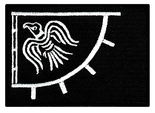 Amazon.com: Raven Banner Black Viking Flag Embroidered Patch Iron ...