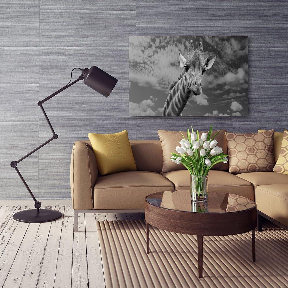 Impression sur Toile Palmiers Feuilles D/écoration Murale 30x40 cm Feeby Frames Noir ET Blanc Tableau D/éco Image imprim/ée