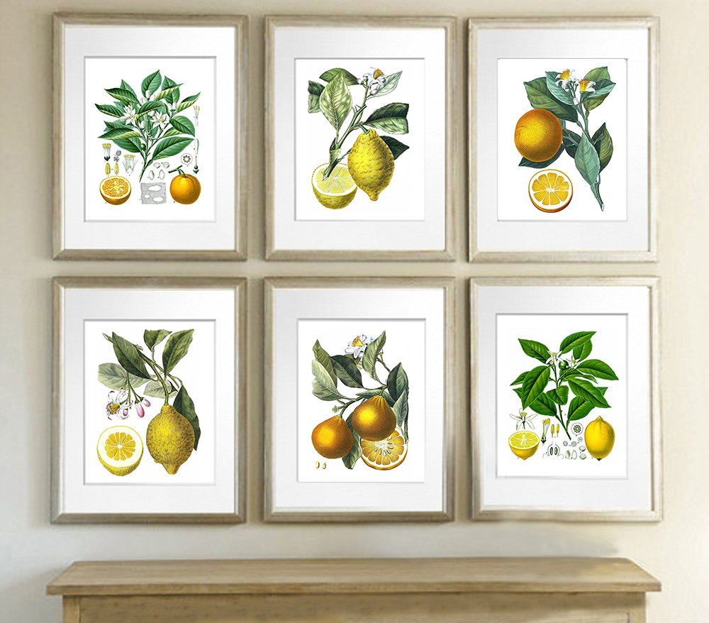 lemon prints
