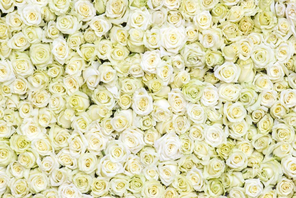 10x8ft Background Floral Wall Photography Backdrop Photo Video Props HXFU121