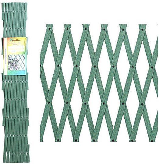 PAPILLON 8091535 Celosia PVC Verde Extensible 2x1 Metros, 2x1m: Amazon.es: Jardín