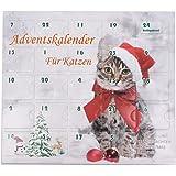 Adventskalender für Katzen Katzenspielzeug Weihnachten