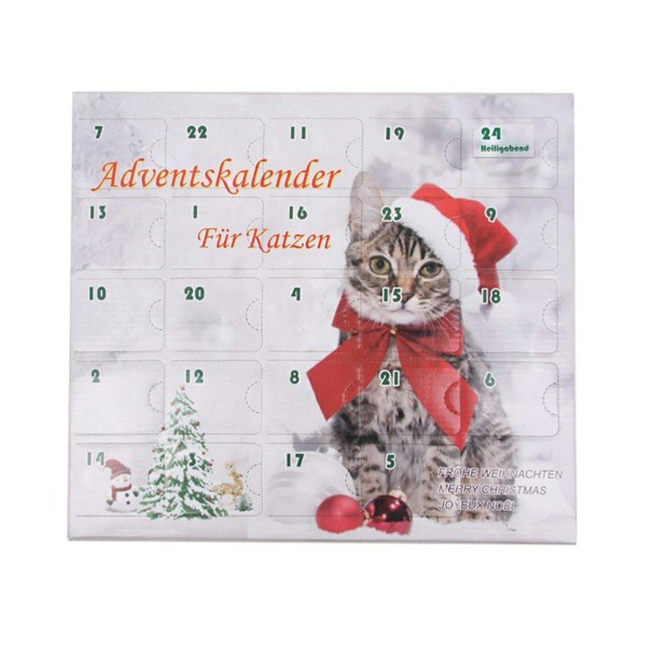 Calendrier de l'Avent pour chats jouet pour chat noël Leitner