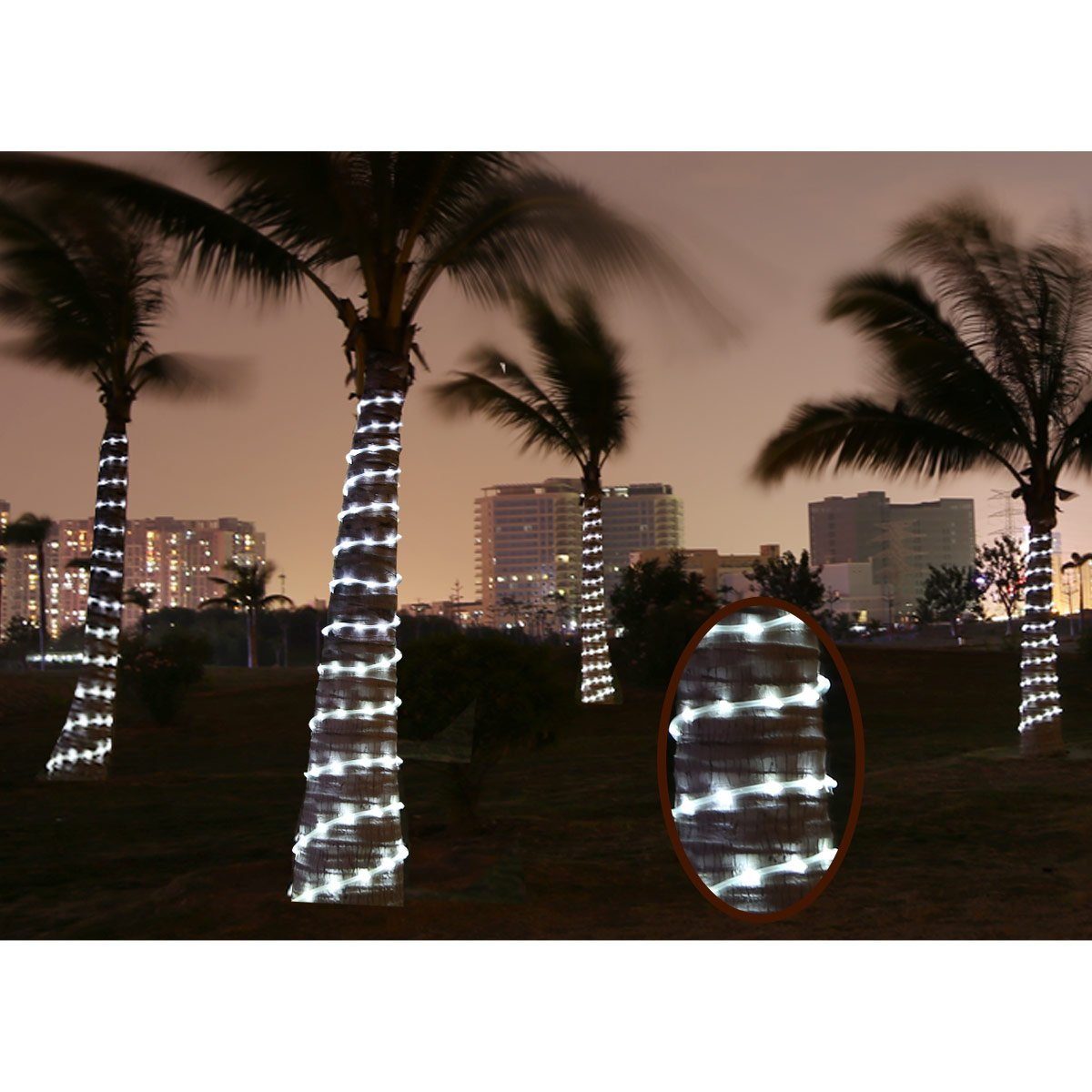 Le solar rope lights 5 meters waterproof 50 leds 12 v le solar rope lights 5 meters waterproof 50 leds 12 v daylight white portable with light sensor outdoor rope lights ideal for christmas wedding mozeypictures Images