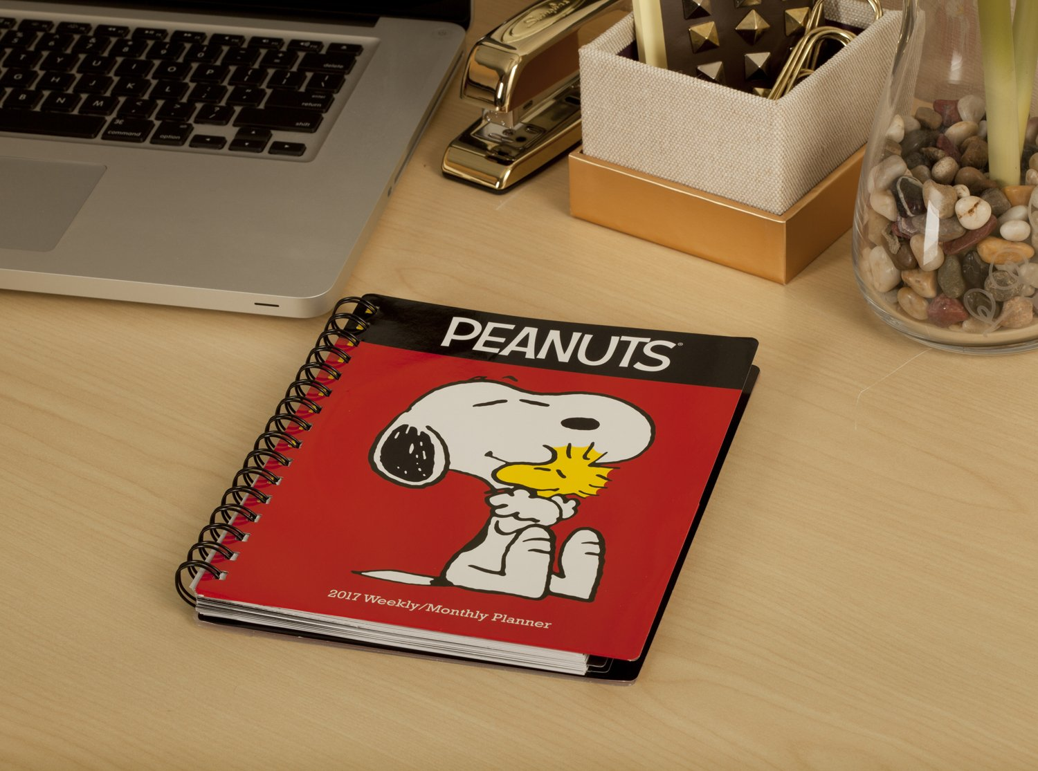 Peanuts Weekly and Monthly Planner (2017): Day Dream ...
