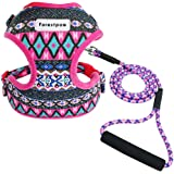 Forestpaw Multi-Colored Stylish Dog Walking Vest Harness and Leash Set- Soft Mesh Padded No Pull Dog Harness for Yorkies,Chih