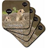 3dRose Groundhog I Saw My Shadow - Soft Coasters, Set of 8 (cst_27350_2)
