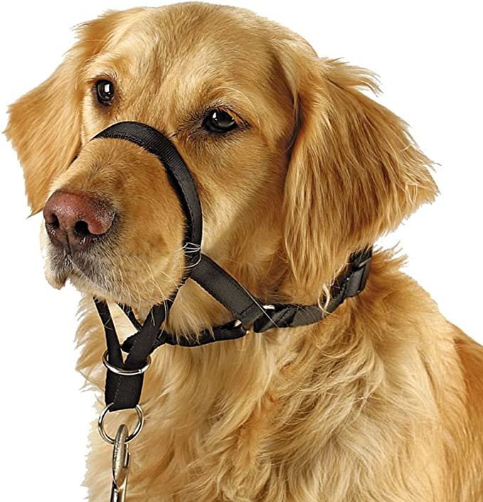 Barkless Dog Head Collar, No Pull Training