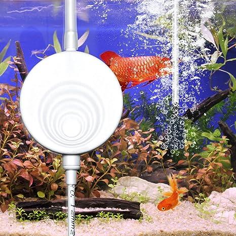 Eletek Superleise Superminiluftpumpe Mit Elektromagnetische Welle Die Luftpumpe Für Das Aquarium Sauerstoff Pumpe 50 Liter Haustier