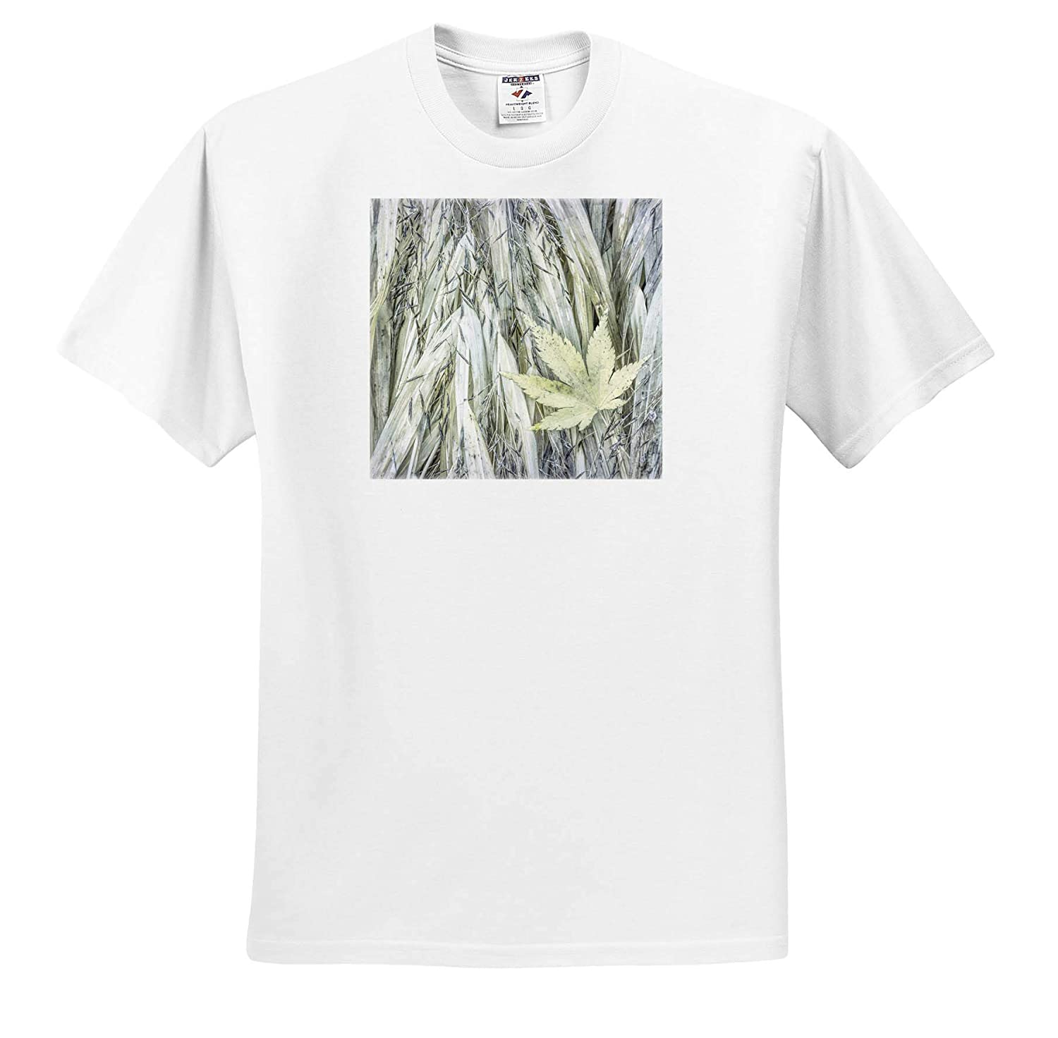 Natural Patterns ts/_315097 Maple Leaf on Japanese Forest Grass in Autumn - Adult T-Shirt XL 3dRose Danita Delimont