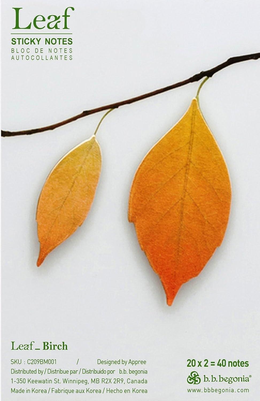 b.b.begonia Leaf_ Birch Sticky Notes, Brown, Medium (C209BM001)