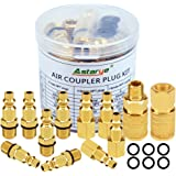 """Air Coupler and Plug Kit 1/4"""" NPT Air Fittings Astarye 12 Pieces Industrial Type D Quick Connect Set"""