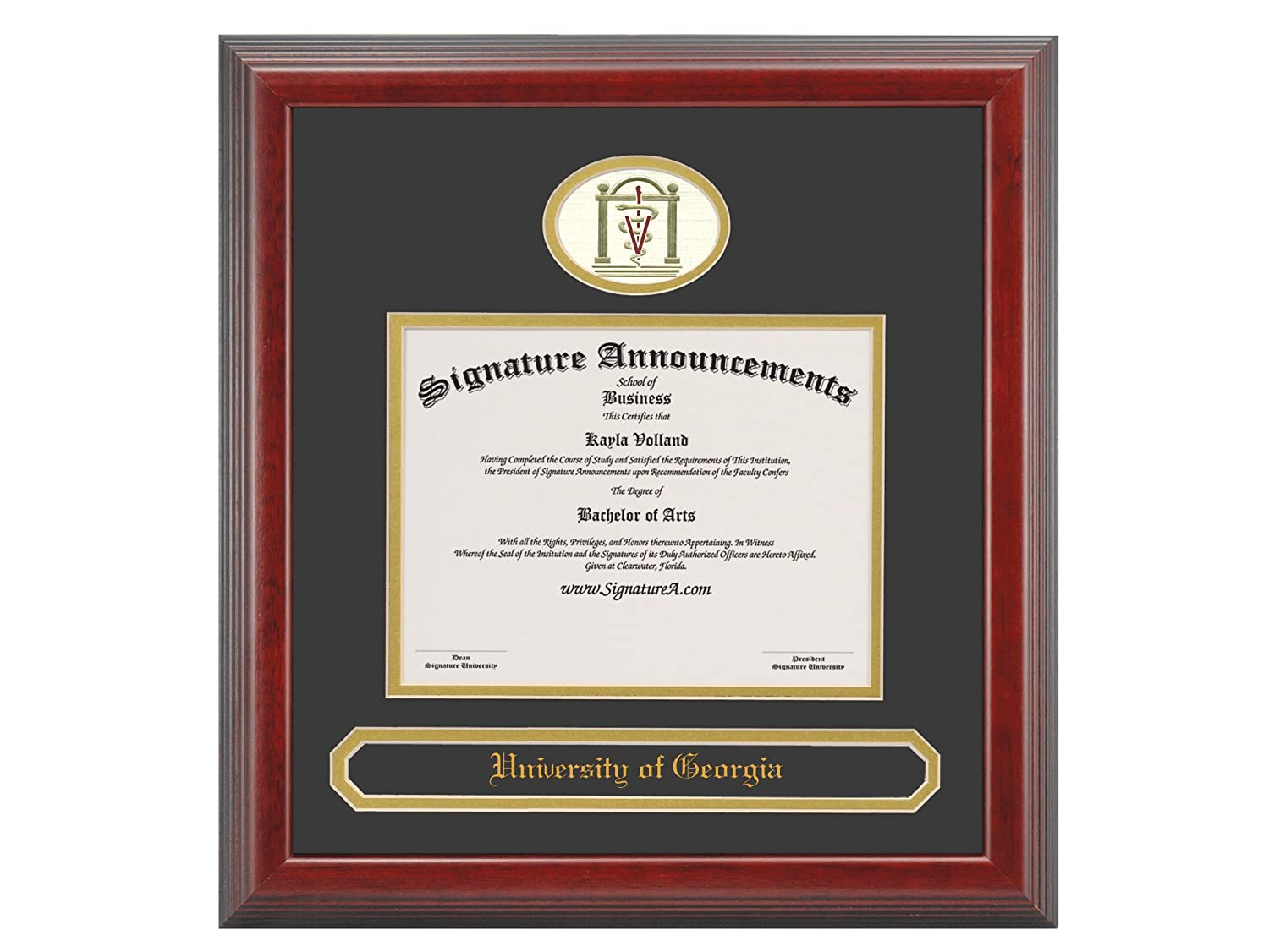 20 x 20 Signature Announcements University-of-Georgia-College-of-Veterinary Sculpted Foil Seal /& Name Graduation Diploma Frame Cherry