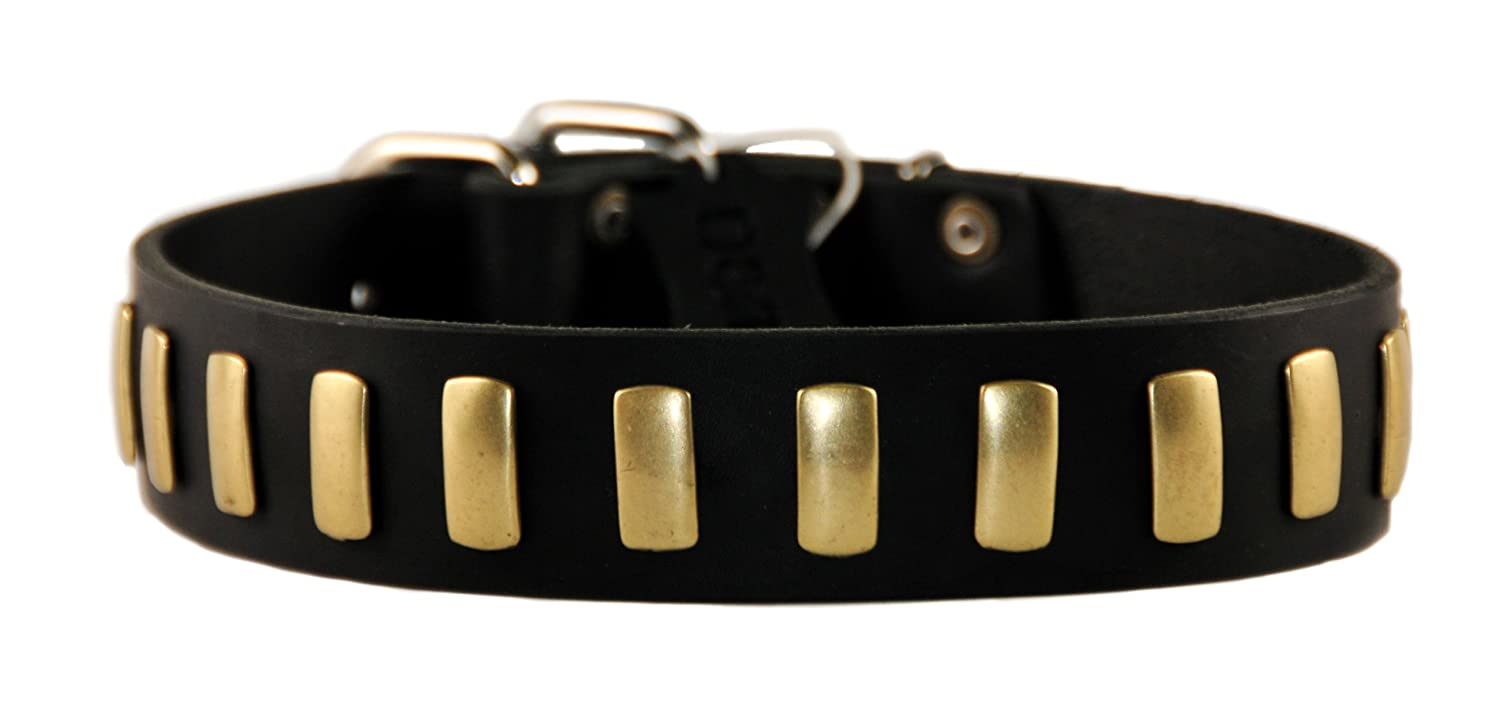 Dean and Tyler PLATED PERFECTION , Dog Collar with Nickel Buckle and Brass Plates Black Size 32-Inch by 1-1 2-Inch Fits Neck 30-Inch to 34-Inch