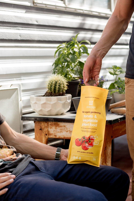 recommended tomato fertilizer