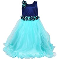 Wish Karo Baby Girls Party Wear Frock Long Dress DN (LFg1006sg)