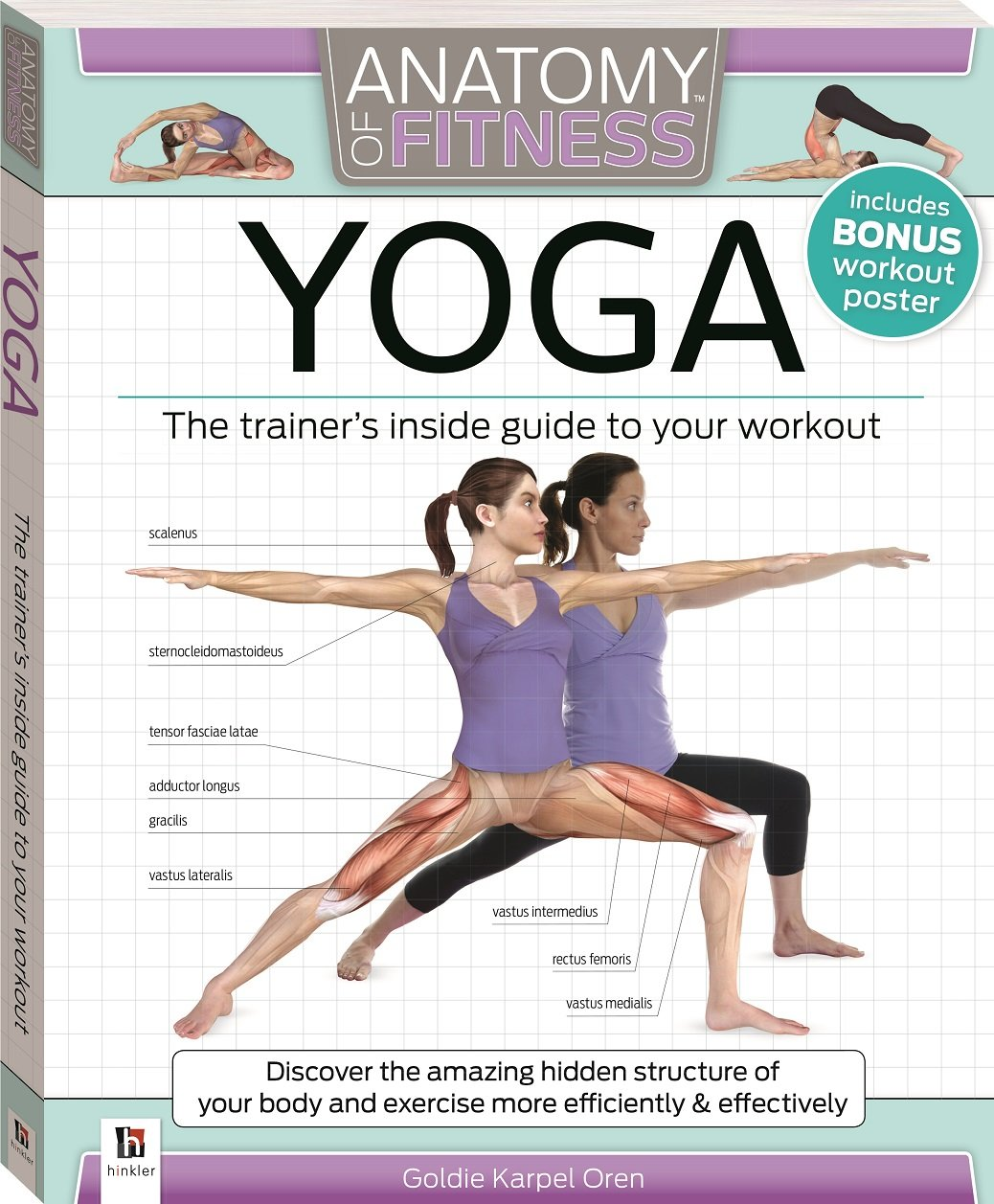 Anatomy of Fitness Yoga: Goldie Oren: 9781743080092: Amazon.com: Books