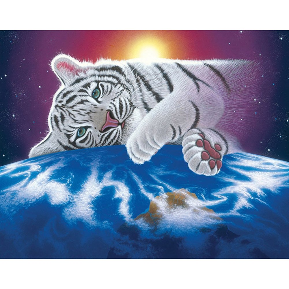 5D Diamond Painting Cross Stitch Kits Set Diamond Embroidery Diamond Mosaic DIY Embroidery Painting White Tiger zsl