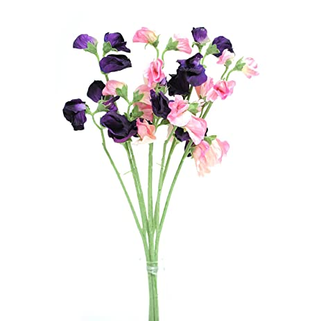 Amazon floristrywarehouse artificial silk sweetpea pink floristrywarehouse artificial silk sweetpea pink purple stems sweet pea flowers 16 inches mightylinksfo