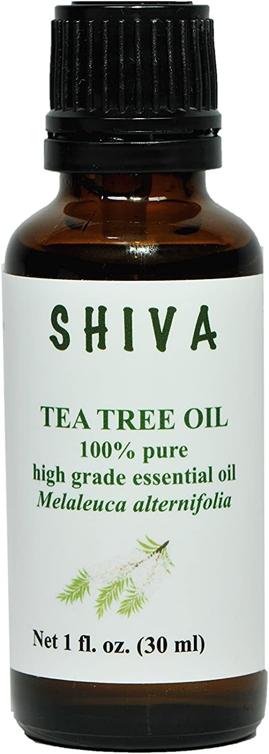 Shiva Pure Tea Tree Essential Oil 1 oz. (Melaleuca). Low Introductory Price for a Limited time.