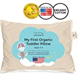 Amazon Com Toddler Pillow Soft Hypoallergenic Best
