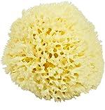 Neptune Natural Sea Wool Sponge - All Natural Honeycomb Renewable Sea