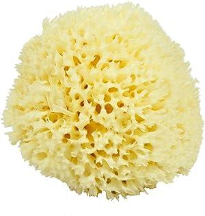 Neptune Natural Sea Wool Sponge - All Natural Honeycomb Renewable Sea Sponge 4.5-5.5 inches