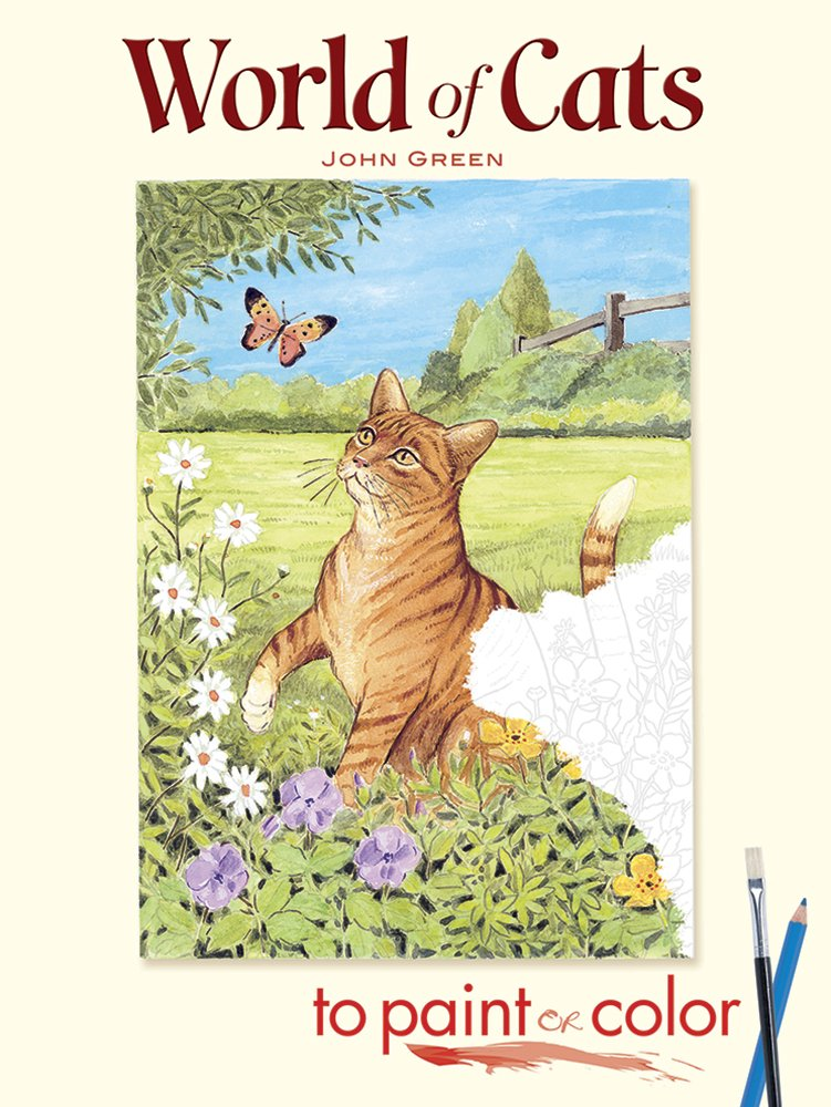 World Of Cats To Paint Or Color Dover Art Coloring Book John Green 9780486462332 Amazon Books