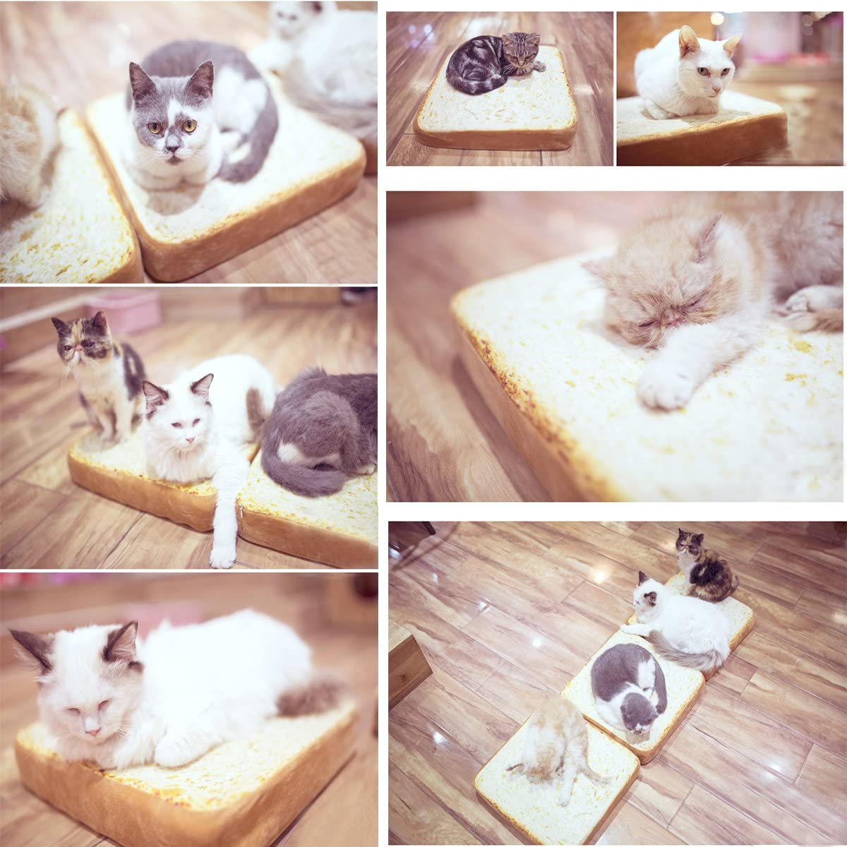 SanSiDo Cat Bed Mat Pet Bed Mattress Creative Toast Bread Foam Cushion for Cute Animal Catty and Doggy Sleeping Playing Resting
